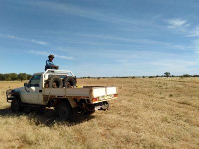 agriculture-farming-australia-4