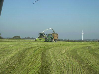 agriculture-farming-denmark-1
