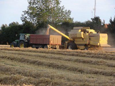 agriculture-farming-denmark-4