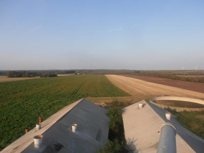 agriculture-farming-denmark-5