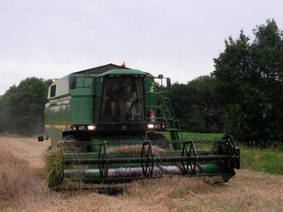 agriculture-farming-denmark-7