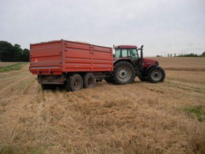 agriculture-farming-denmark-8