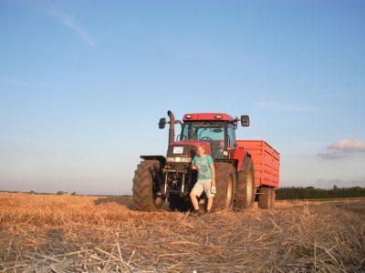 agriculture-farming-denmark-9